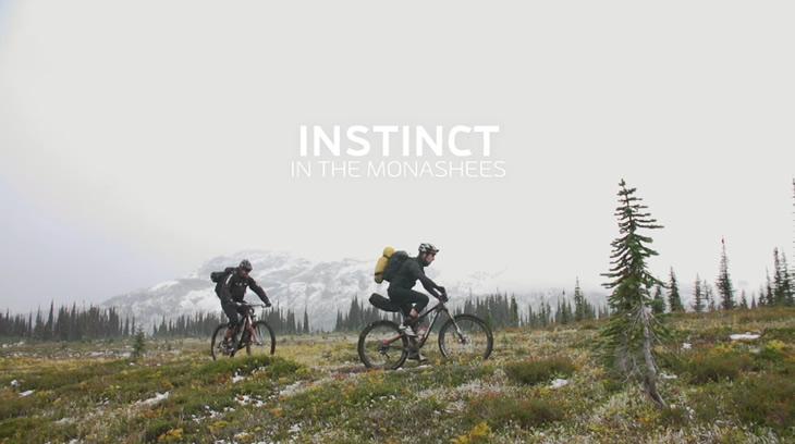 instinctsimmons