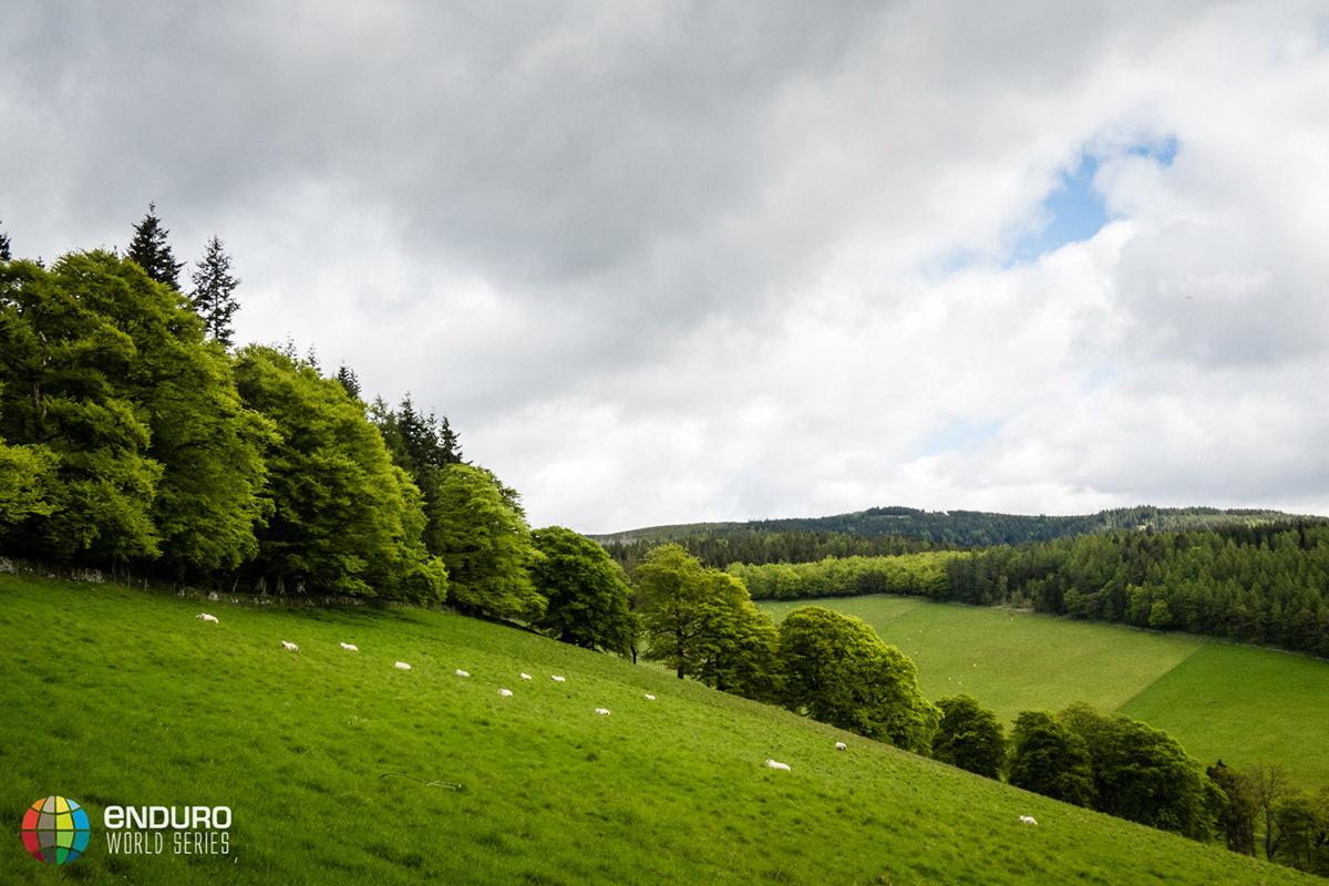 The rolling green hills of the Scottish Borders.