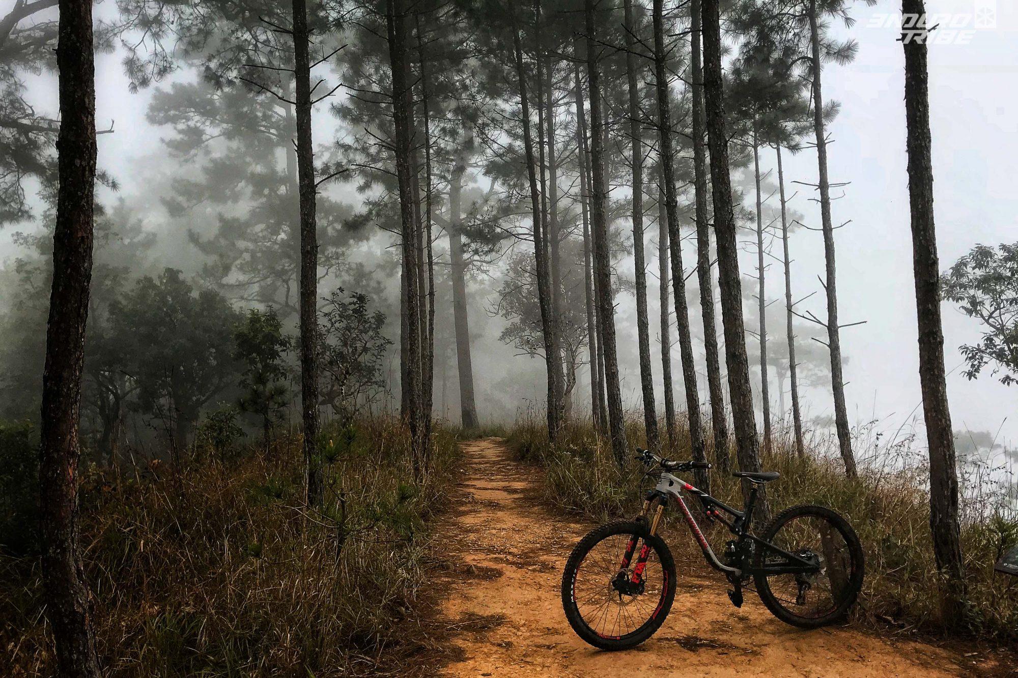 Si dans les basses altitudes il y fait toujours beau et chaud, les sommets sont souvent frais en embrumés. Ambiance mystique garantie !